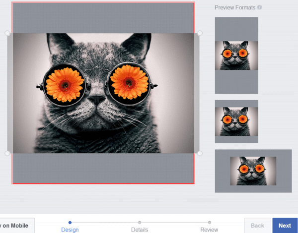 Tips on How to Make Custom Facebook Frames