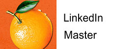 LinkedIn Master Wordpress Plugin