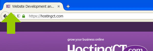Example of a Favicon displayed in a Browser