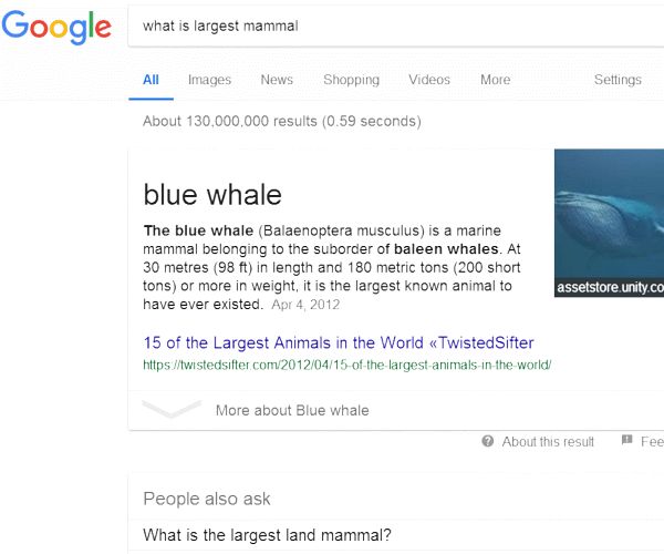 Google Snippets Information