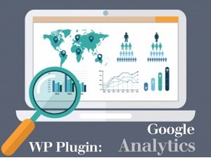 WP Plugin:  Google Analytics