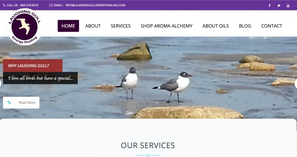 The Joy of a New Website - Laughing Gull Energy Healing